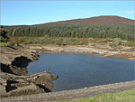 A very low Cringle Reservoir - (20/10/03)